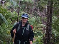 Lake Kaitawa Fairy Springs Track