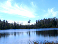 Lake Louisa State Park