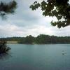 Lake O\' The Pines