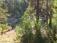 Lake Tahoe Basin Management Unit