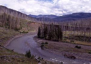 Lamar River