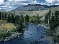 Lamar Valley