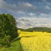 Landscape Park Góry Opawskie