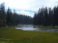 Lewis Channel / Shoshone Lake Loop Trail