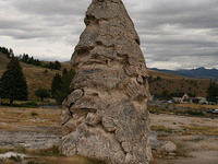 Liberty Cap