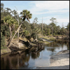 Little Econlockhatchee River Florida