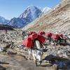 Lobuche Near Mount Everest - Nepal