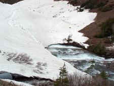 Logan Glacier Montana USA
