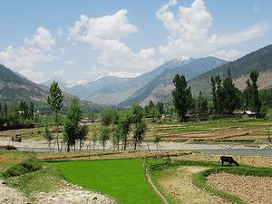 Lolab Valley