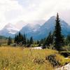 Loneman Mountain Trail - Glacier - Montana - USA