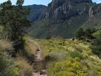 Lost Mine Trail