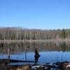 Lowell Dracut Tyngsboro State Forest