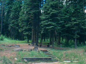Lower French Creek Campground