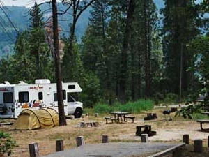 Lupine Cedar Bluff Campground