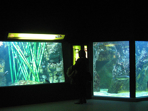 Aquarium du Grand Lyon