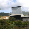 A Coffee Processing Plant