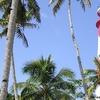 Tangasseri Beach Light House