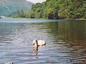 Loch Achray