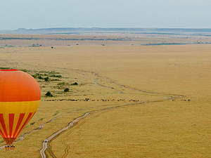 6 Days Special Safari in Kenya Photos