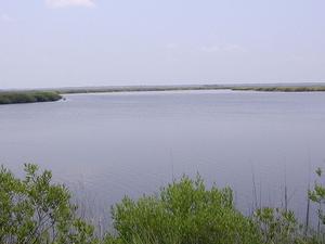 Mackay River