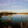 Mackinaw River State Fish & Wildlife Area