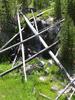 Mallard Creek Trail - Yellowstone - USA