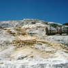 Mammoth Hot Springs View
