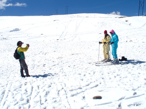 Manali Honeymoon Package Photos