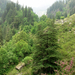 Manali Wildlife Sanctuary