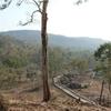 Manchippa Forest
