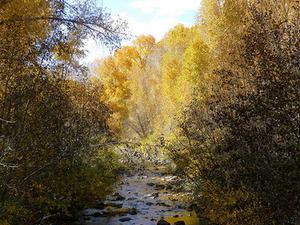 Mancos River