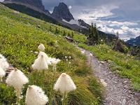 Many Falls Trail