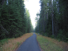 McDonald Creek Bike Path - Glacier - Montana - USA