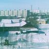 Megion Severyanka