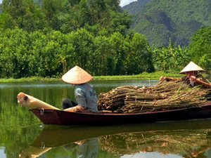 Essential Vietnam for Groups Photos