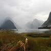 Milford Sound Views - Southland NZ