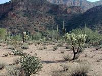 Mineral Mountains, Arizona