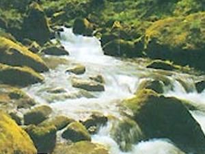 Minor Kößlbach Valley