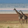@ Monduli - Arusha - Tanzania