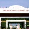 Mong Cai Tra Co