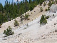 Monument Geyser Basin Trail