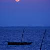 Moon Over Mombasa