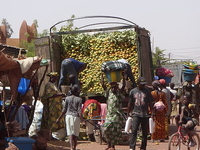 Mopti