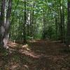Moraine Trail