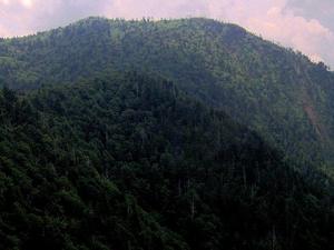 Mount Kephart