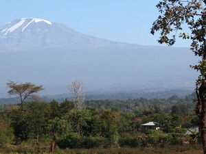 One Day Trip Around Kilimanjaro Fotos