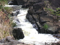 Moyar River And Waterfall
