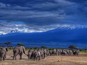 Mt Kenya 4 Days Package Photos