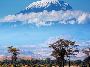 Mt. Kilimanjaro Climbing 6 Days Photos
