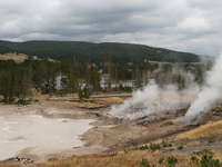 Mud Geyser